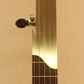 Custom banjo with brass fretless fingerboard