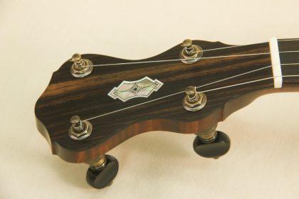Dobson Special Banjo