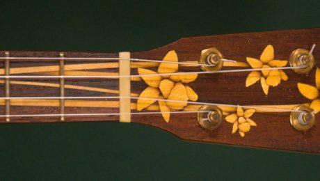 Custom pony banjo with daffodil inlay