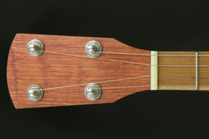 Custom Left Handed Tenor Banjo