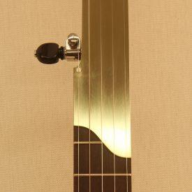Custom banjo with brass fretless fingerboard