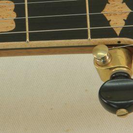 Custom banjo with wood fretboard binding